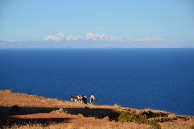 Perù-Lago Titicaca