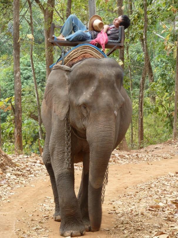Thailandia-Chang Mai
